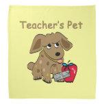 El mascota del profesor