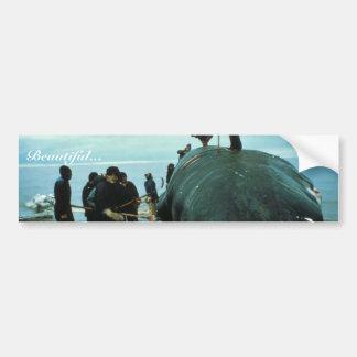 El matar de la ballena pegatina de parachoque