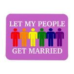 El matrimonio homosexual de la ayuda dejó a mi gen imán de vinilo