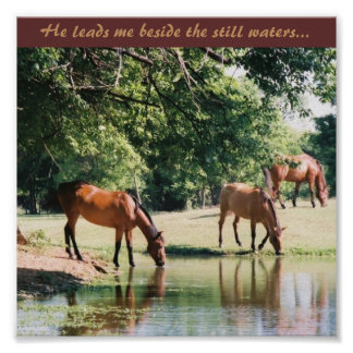 Él me lleva al lado de las aguas inmóviles… posters