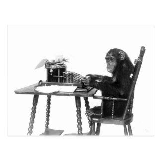 El mecanografiar del chimpancé tarjetas postales