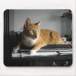 El mecanógrafo tapetes de ratón