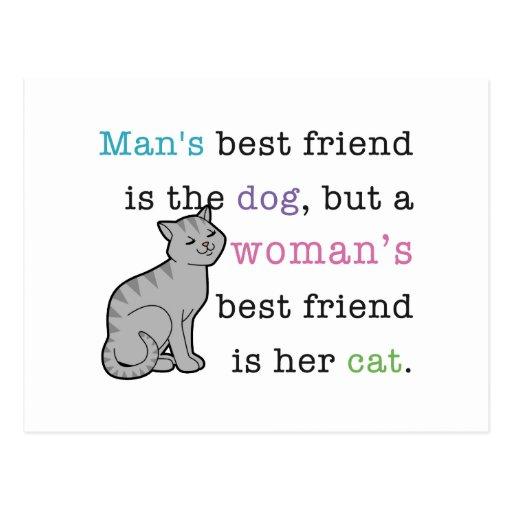 El mejor amigo de la mujer - su gato postal