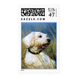 El mejor amigo de un hombre timbre postal