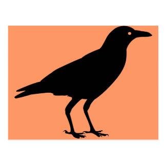 El mejor cuervo Halloween del negro del precio Postales