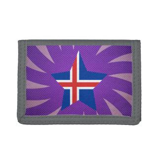 El mejor diseño de la bandera de Islandia