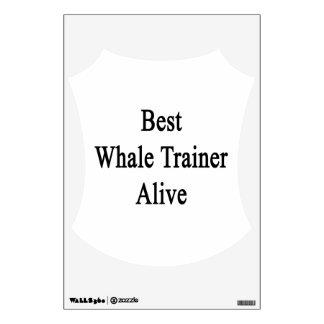El mejor instructor de la ballena vivo