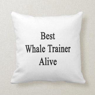 El mejor instructor de la ballena vivo cojines