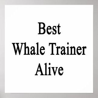 El mejor instructor de la ballena vivo posters