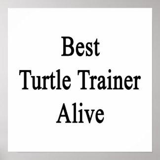 El mejor instructor de la tortuga vivo impresiones