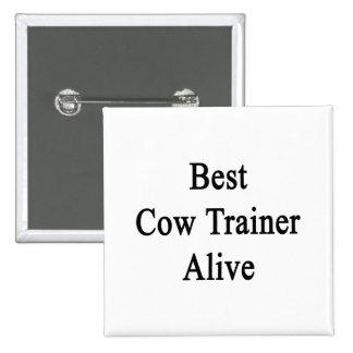 El mejor instructor de la vaca vivo pins