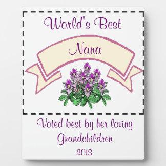 El mejor personalizar de Nana del mundo para Nam d Placa