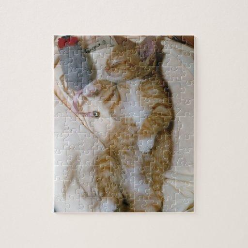 El mejor rompecabezas del gatito: Magia de Butchie