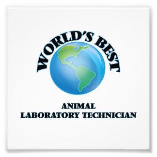 El mejor técnico del laboratorio animal del mundo impresion fotografica