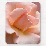 El melocotón florece los regalos color de rosa sal alfombrillas de ratones