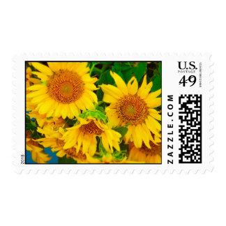 El mercado del granjero del mercado kc de la timbres postales
