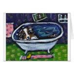 El merle azul del pastor australiano toma el baño felicitacion