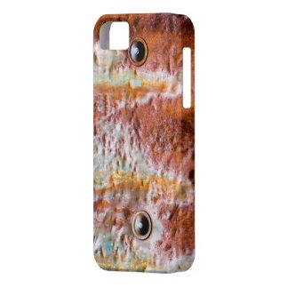 el metal observa moho iPhone 5 fundas