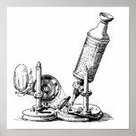 El microscopio de Robert Hooke Poster