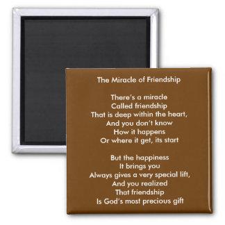El milagro de la amistad imán cuadrado