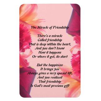 El milagro del imán de la amistad