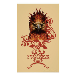 El mirar fijamente de Fawkes Póster