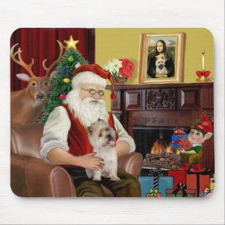 El mojón Terrier de Santa Tapete De Raton