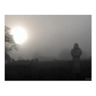 El monje enojado del parque de la mota de polvo postales