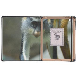 El mono del lobo lindo de Guenon iPad Protector