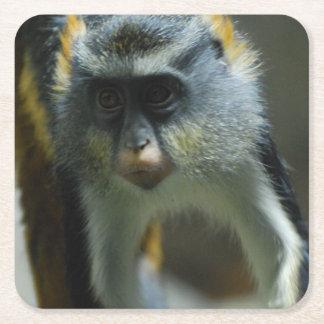 El mono del lobo lindo posavasos personalizable cuadrado