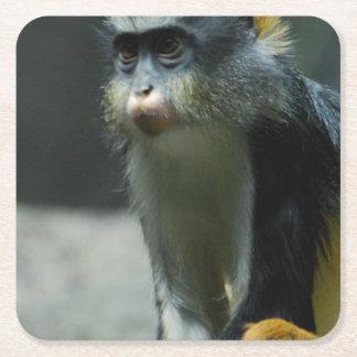 El mono del lobo posavasos desechable cuadrado