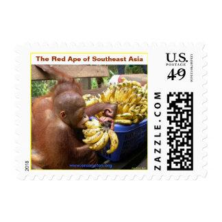 El mono rojo de Asia sudoriental Sello