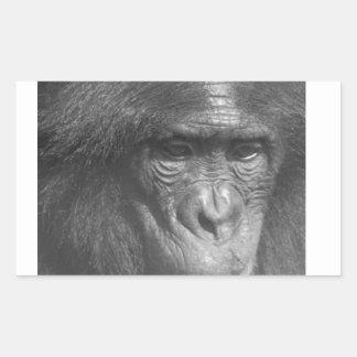 El mono ve el mono hacer pegatina rectangular