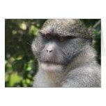 El mono ve, mono hace la tarjeta de felicitación