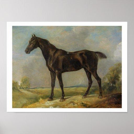 El Montar a caballo-Caballo negro del policía de G Posters