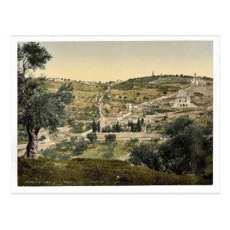 El monte de los Olivos y Gethsemane, visión genera Tarjeta Postal