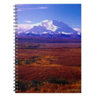 El monte McKinley Libros De Apuntes