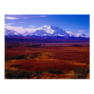 El monte McKinley Postal