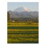 El Monte Rainier en el estado de Washington Tarjetas Postales