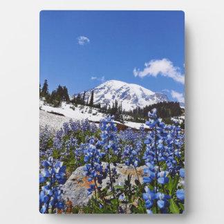 El Monte Rainier en el punto del paraíso Placa