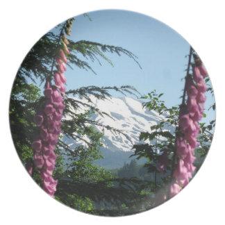 El Monte Saint Helens de las placas rápidas del de Plato Para Fiesta