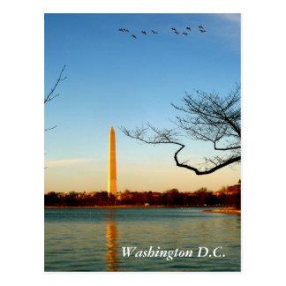 El monumento de Washington Tarjeta Postal