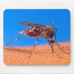 El morder del mosquito alfombrilla de ratón
