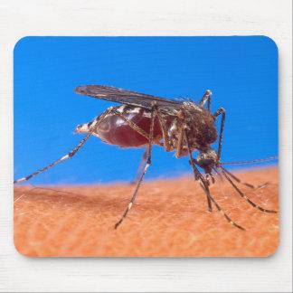 El morder del mosquito alfombrilla de raton