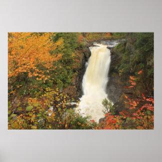 El Moxie baja en otoño las bifurcaciones Maine Poster