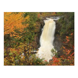 El Moxie baja en otoño las bifurcaciones Maine Tarjetas Postales