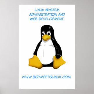 El muchacho resuelve el poster de Linux