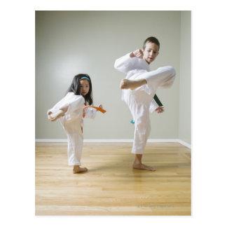 El muchacho y el chica (4-9) el Taekwondo Postal