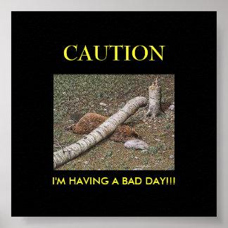El mún día del castor póster
