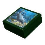 El mundo de la caja de regalo del delfín
